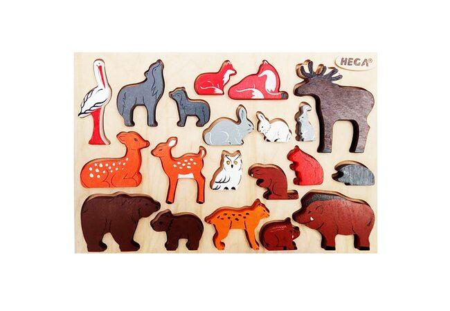 Набор «Лесные животные» цветной
