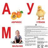 Большие русские карточки «Алфавит». Ламинированные.
