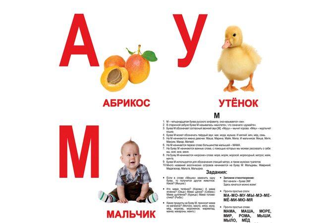 Большие русские карточки «Алфавит»