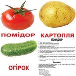 Большие украинские карточки с фактами «Овощи», 20