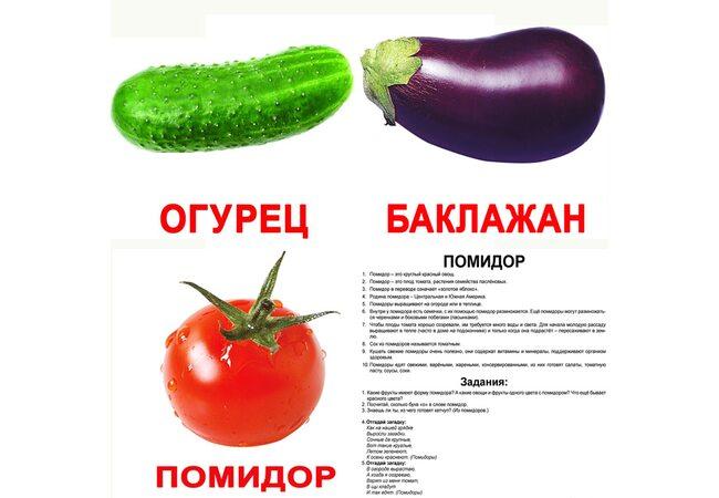 Большие русские карточки с фактами «Овощи».Ламинированные.