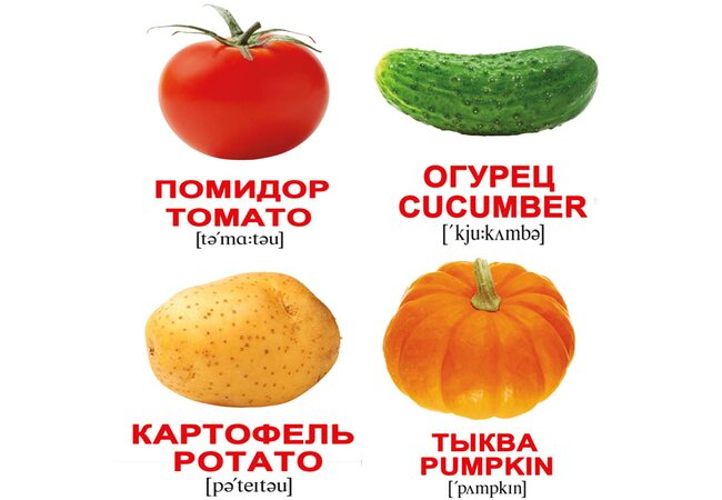 Мини-карточки «Овощи/Vegetables», 40
