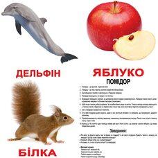 Большие украинские карточки с фактами «Мои первые знания», ламинированные