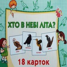 Набор карточек «Птицы» (укр.)