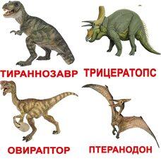 Большие русские карточки с фактами «Динозавры», 20