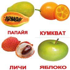 Русские карточки «Фрукты с фактами» (МИНИ), 40