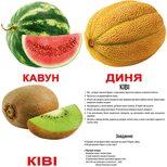Большие украинские карточки с фактами «Фрукты», 20