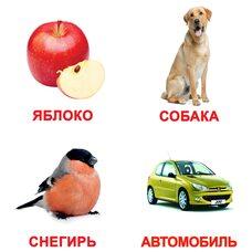 Большие русские карточки с фактами «Мои первые знания». Ламинированные.