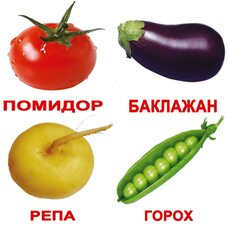 Русские карточки «Овощи с фактами» (МИНИ), 40