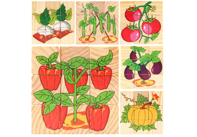 Кубики «Овощи на грядке», 9 шт