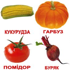 Украинские карточки «Овощи с фактами» (МИНИ), 40