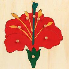 Части цветка №2