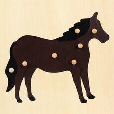 Строение лошади №2