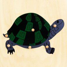 Строение черепахи №3