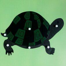 Строение черепахи