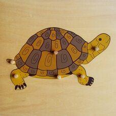 Строение черепахи №2