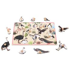 Вкладыш «Птицы»